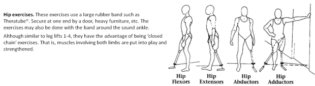 lower extremity amputee exercises hip