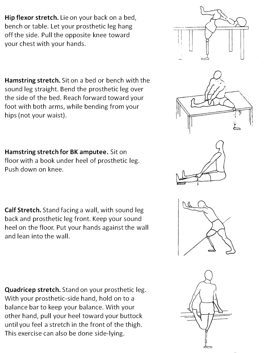 lower limb stretching exercises pdf